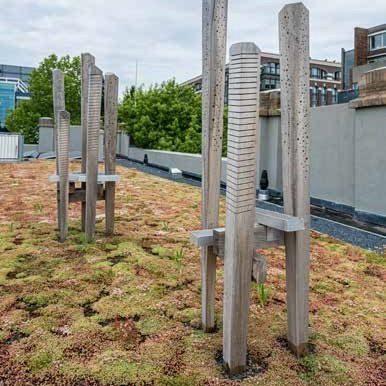 Bijenburghten bestaande uit twee installaties van enkele houten palen met gaatjes erin waarin bijen kunnen nestelen.
