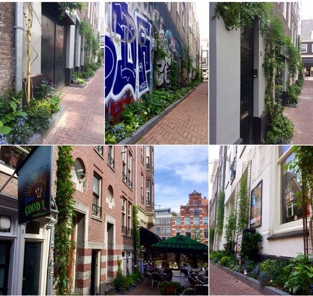 Compilatie foto's groene gevels en geveltuintjes Reguliersdwarsstraat