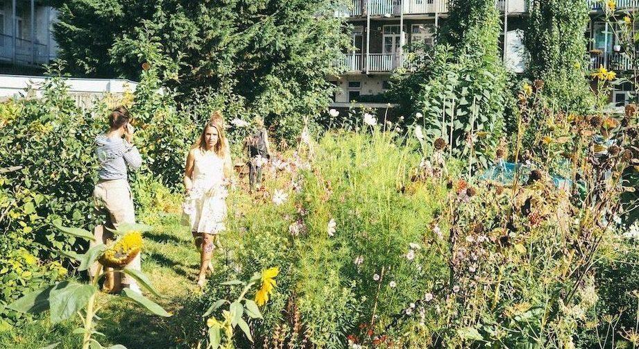 Temidden van woningen bloeien zonnebloemen en andere bloemen. Bewoners lopen langs het lustige groen.