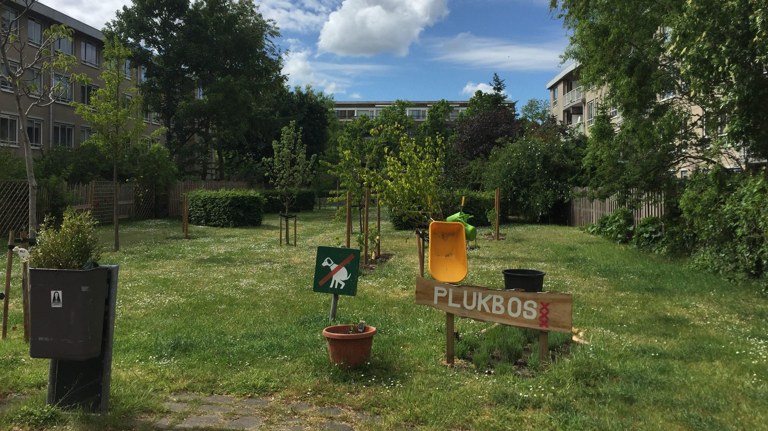 Het Plukbos. Een binnenveldje tussen woningen met gras, de aanplant van jonge bomen en een bordje verboden te poepen voor honden.