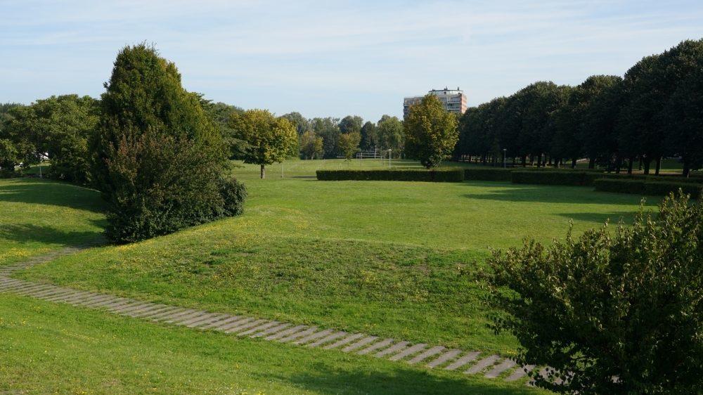 Groen grasveld met bomen