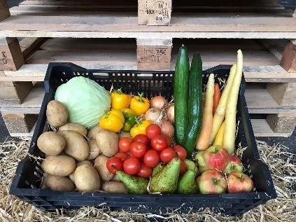 Krat gevuld met verse groenten van Boeren voor Buren