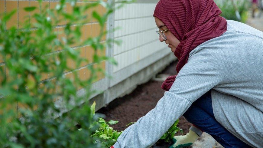 Deelnemer NK Tegelwippen plant plantjes in geveltuintje