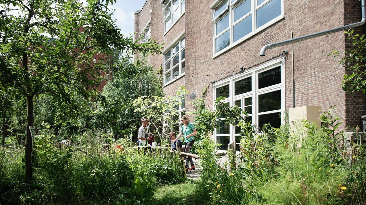 De publieke tuin van MidWest. Copyright: Bram Budel