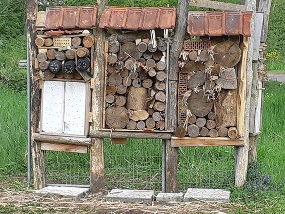 Insectenhotel in Zuidoost (foto: Henk van Hilst)